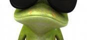 """""""青蛙""""给""""小强""""的参考规则"""